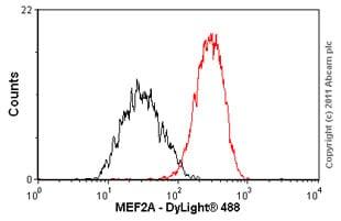 Flow Cytometry - Anti-MEF2A antibody [EP1706Y] - BSA and Azide free (ab235999)