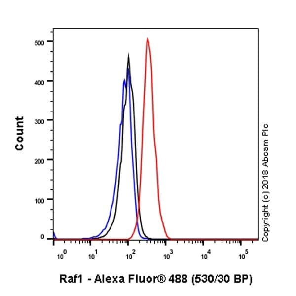 Flow Cytometry - Anti-Raf1 antibody [EP4969] - BSA and Azide free (ab236003)