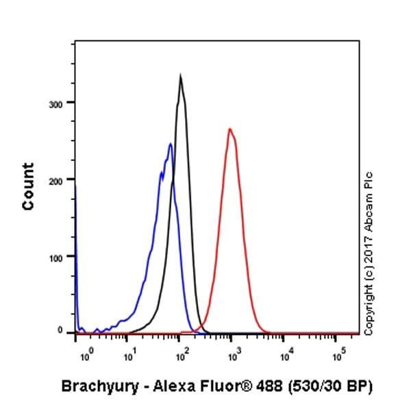 Flow Cytometry - Anti-Brachyury / Bry antibody [EPR18113] - BSA and Azide free (ab236023)