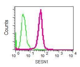 Flow Cytometry - Anti-SESN1 antibody [EPR1930(2)] - BSA and Azide free (ab236027)