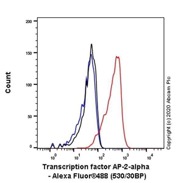 Flow Cytometry (Intracellular) - Anti-Transcription factor AP-2-alpha antibody [EPR2688(2)] - BSA and Azide free (ab236043)