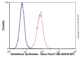 Flow Cytometry - Anti-Glutathione Synthetase antibody [EPR6563] - BSA and Azide free (ab236062)