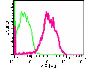 Flow Cytometry - Anti-eIF4A3 antibody [EPR14301(B)] - BSA and Azide free (ab236131)
