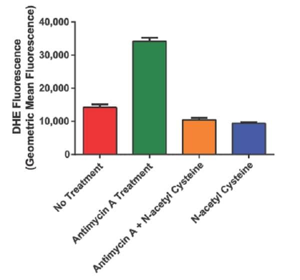 Example Data.