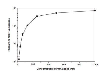 PMA dose-response