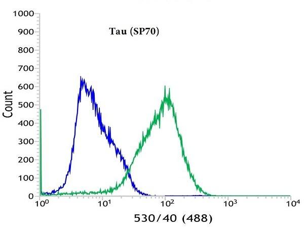 Flow Cytometry - Anti-Tau antibody [SP70] - BSA and Azide free (ab236219)