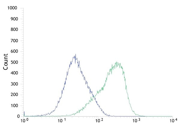 Flow Cytometry - Anti-Bcl2 alpha antibody [SP66] - BSA and Azide free (ab236221)