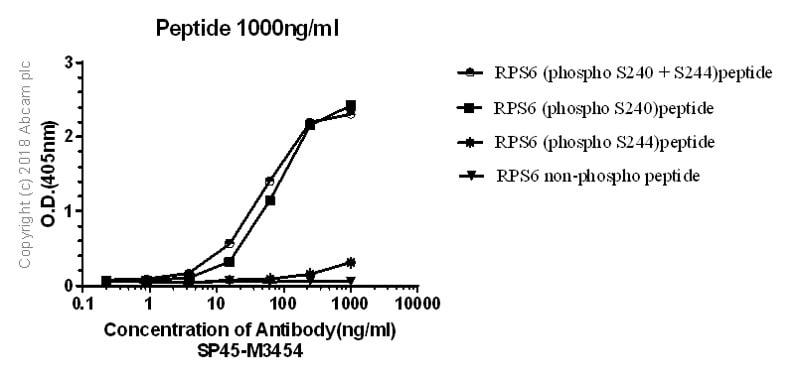 ELISA - Anti-RPS6 (phospho S240 + S244) antibody [SP45] - BSA and Azide free (ab236438)