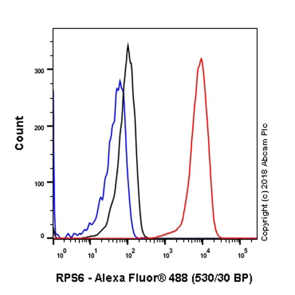 Flow Cytometry - Anti-RPS6 antibody [EPR22168] - BSA and Azide free (ab236454)