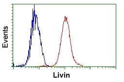 Flow Cytometry - Anti-Livin antibody [OTI1B10] (ab236500)