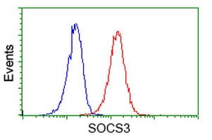 Flow Cytometry - Anti-SOCS3 antibody [OTI3D3] (ab236519)