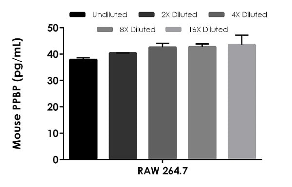 Interpolated concentrations of native PPBP in mouse RAW 264.7 cell supernatant (100%).