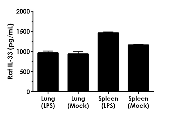 Comparison of IL-33 in unstimulated and LPS stimulated lung and spleen tissue supernatants.