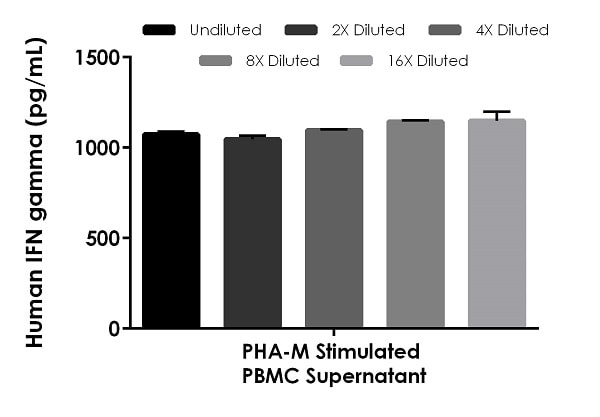 Interpolated concentrations of native IFN gamma in human PHA-M stimulated PBMC cell culture supernatant samples.