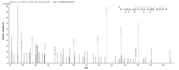 Mass Spectrometry - Recombinant Human Peroxiredoxin 2/PRP protein (His tag) (ab236937)