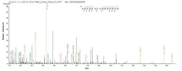 Mass Spectrometry - Recombinant Apoptin (VP3) protein (His tag) (ab237006)