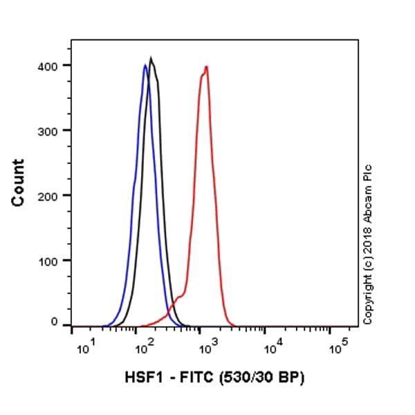 Flow Cytometry - Anti-HSF1 antibody [EP1710Y] (FITC) (ab237150)