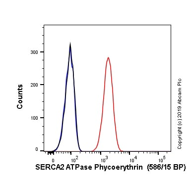 Flow Cytometry - PE Anti-SERCA2 ATPase antibody [EPR9392] (ab237223)