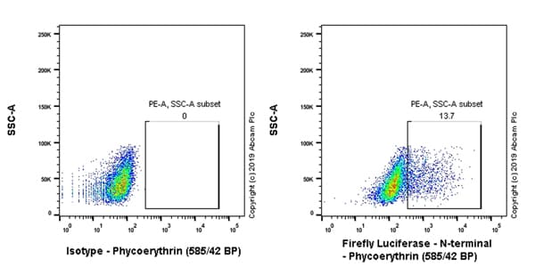 Flow Cytometry - Anti-Firefly Luciferase antibody [EPR17789] (Phycoerythrin) (ab237253)