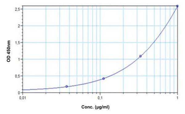 Example of Adalimumab standard curve