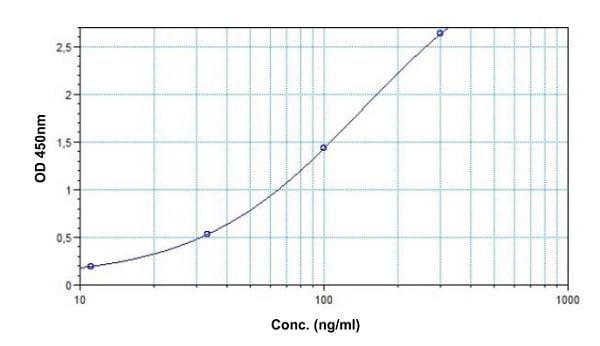 Example of Trastuzumab standard curve