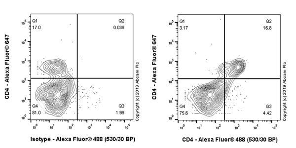 Flow Cytometry (Intracellular) - Anti-CD4 antibody [CAL4] (ab237722)