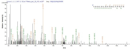 Mass Spectrometry - Recombinant EBV gp340/220 Envelope Protein (Tagged) (ab237750)