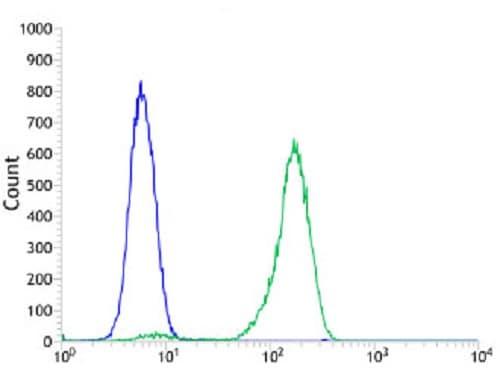 Flow Cytometry - Anti-CD19 antibody [SP291] - BSA and Azide free (ab237772)