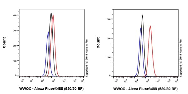 Flow Cytometry - Anti-WWOX antibody [EPR23109-138] (ab238144)