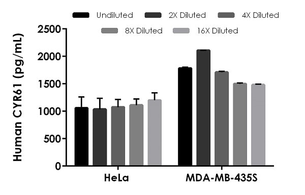 Interpolated concentrations of native CYR61 in human HeLa cell extract based on a 250 µg/mL extract load and MDA-MB435S cell extract based on a 500 µg/mL extract load.