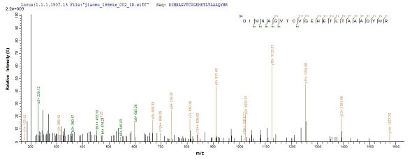 Mass Spectrometry - Recombinant Mycobacterium tuberculosis Hypoxic response protein 1 (Tagged) (ab238290)