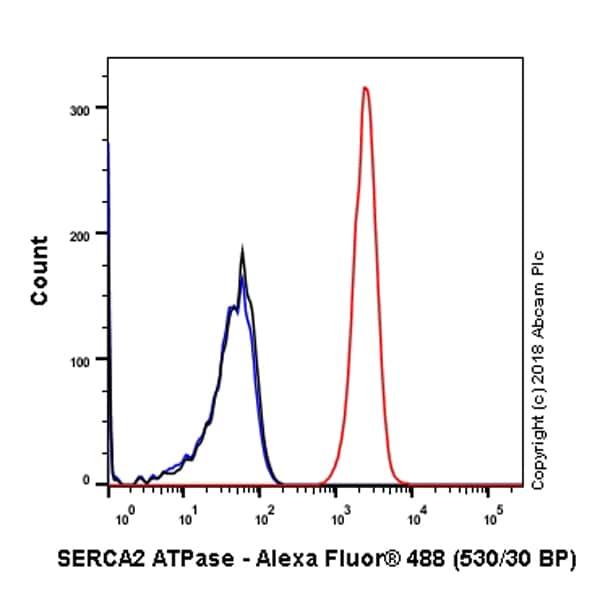 Flow Cytometry - Anti-SERCA2 ATPase antibody [EPR9392] - BSA and Azide free (ab238426)