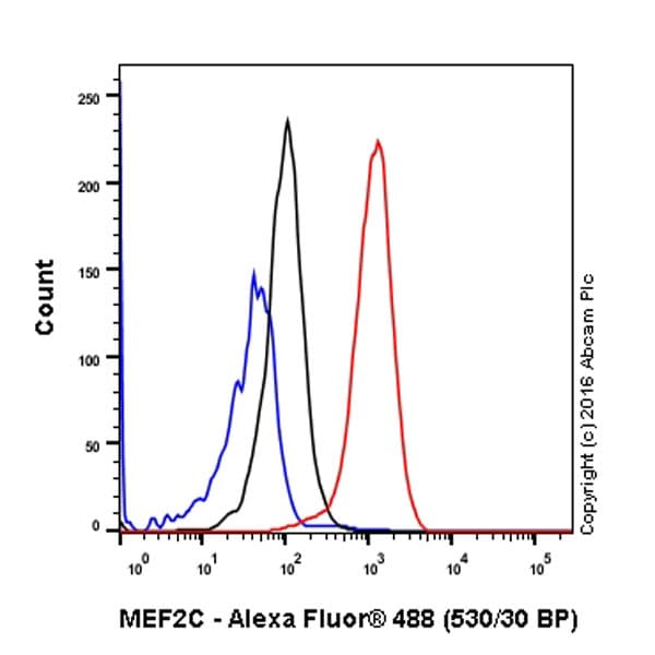 Flow Cytometry - Anti-MEF2A + MEF2C antibody [EPR19089-34] - BSA and Azide free (ab238446)