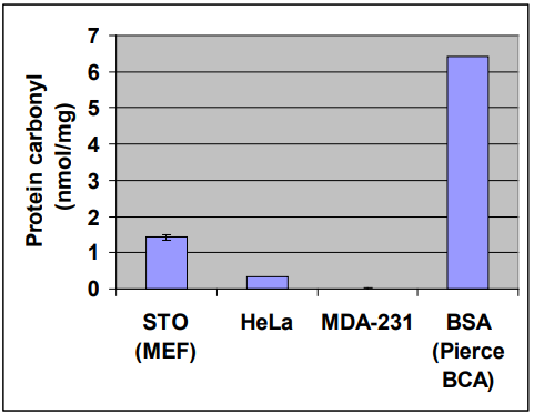 Amount of Protein Carbonyl Content for Cell Lysate and BSA Standard.