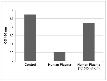 CML Protein Adduct in Human Plasma