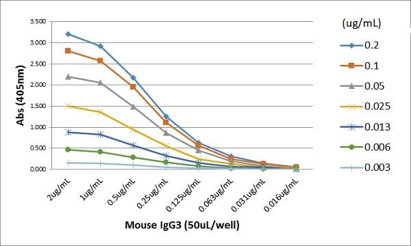 ELISA - Rabbit monoclonal [RM218] Anti-Mouse IgG3 F(ab) (ab238616)