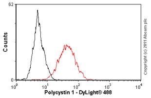 Flow Cytometry - Anti-Polycystin 1 antibody [7e12] - BSA and Azide free (ab238662)