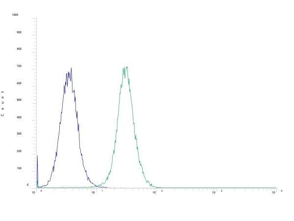 Flow Cytometry - Anti-SATB2 antibody [SP281] - BSA and Azide free (ab238787)