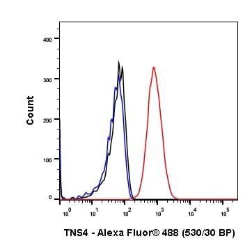 Flow Cytometry - Anti-TNS4/CTEN antibody [SP83] - BSA and Azide free (ab238802)