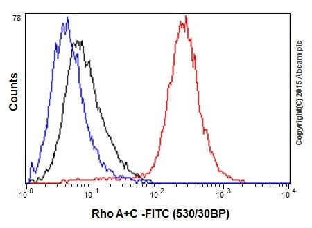 Flow Cytometry - Anti-RhoA + RhoC antibody [EPR18133] - BSA and Azide free (ab238943)