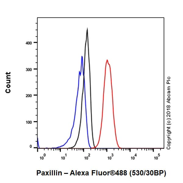 Flow Cytometry - Anti-Paxillin antibody [E228] - BSA and Azide free (ab238950)