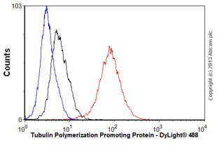 Flow Cytometry - Anti-TPPP antibody [EPR3316] - BSA and Azide free (ab238958)