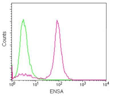 Flow Cytometry - Anti-ENSA antibody [EPR8008(2)] - BSA and Azide free (ab238993)