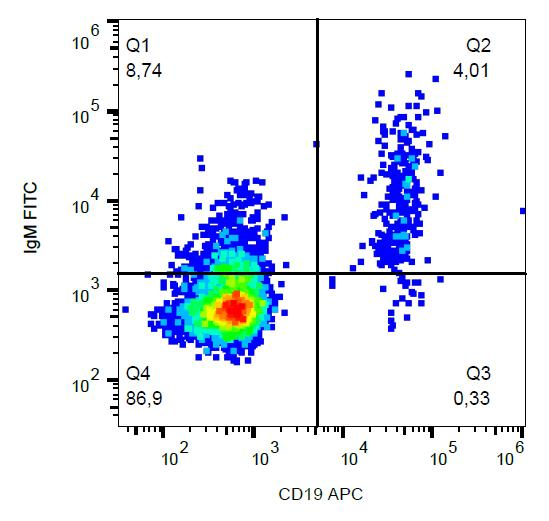 Flow Cytometry - FITC Anti-Human IgM Fc fragment antibody [CH2] (ab239227)
