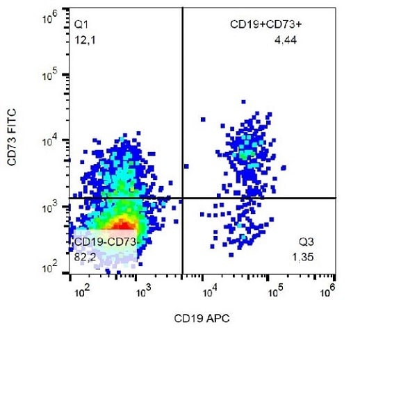 Flow Cytometry - FITC Anti-CD73 antibody [AD2] (ab239246)
