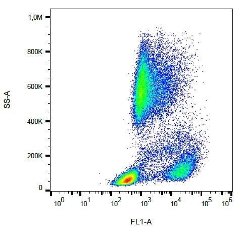 Flow Cytometry - Anti-CD62P antibody [AK4] (FITC) (ab239255)