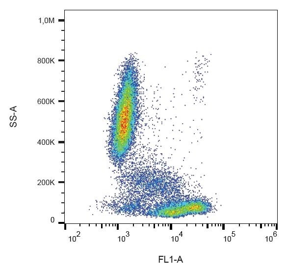 Flow Cytometry - Anti-CD81 antibody [M38] (FITC) (ab239256)