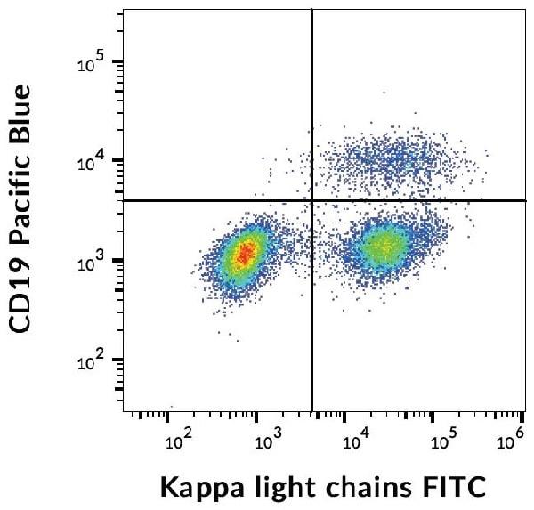 Flow Cytometry - FITC Anti-Kappa light chain antibody [TB28-2] (ab239261)