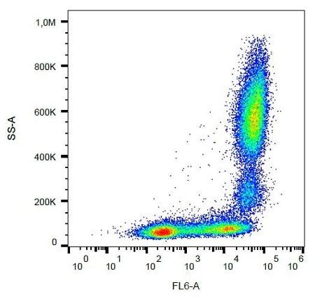 Flow Cytometry - APC Anti-CD11b antibody [MEM-174] (ab239292)