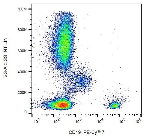Flow Cytometry - PE/Cy7® Anti-CD19 antibody [LT19] (ab239315)